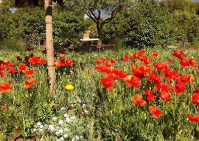Garden_Chezbee_06