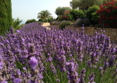 Garden_Chezbee_11